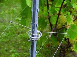 Les écarteurs Ecatik ouverts sont posés sur les piquets de palissage ; ils maintiennent les fils mobiles à hauteur suffisante. Au printemps, la végétation se développe entre les fils ouverts par l'écarteur. Lors du relevage, on referme l'écarteur pour palisser la vigne