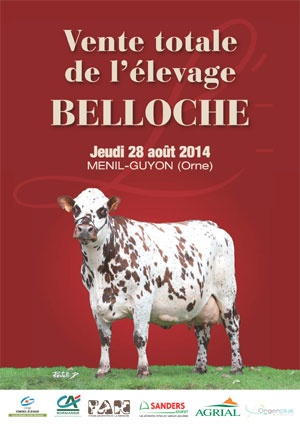 Vente de dispersion du troupeau Belloche