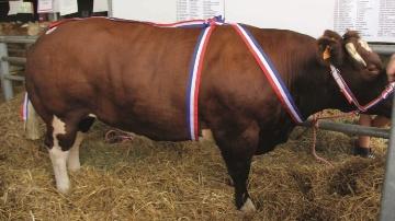 Concours Evron 2014