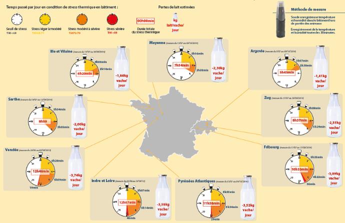 Essais de l'impact dustress thermique sur les vaches laitières