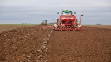Dates et densit�s de semis : appuyer ses choix sur une analyse pluriannuelle