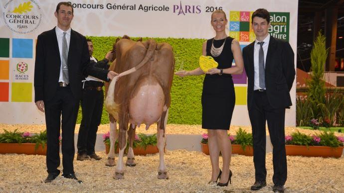 Palmar s red holstein paris salon de l 39 agriculture 2016 - Palmares salon de l agriculture ...