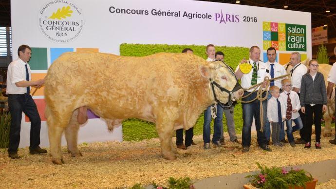 Le champion 2015: Haneton (Aigleroyal x Badine SC) à la Sas La Ferme du Rompoue / et Hugues Pichard.