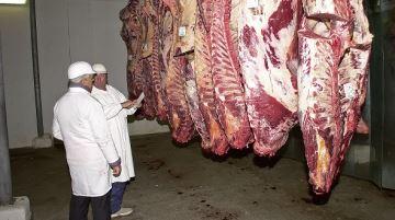 Le gouvernement veut accentuer la r�pression de la maltraitance � animaux