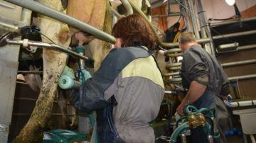 La Fnil s'oppose � la loi Sapin 2 pour l'�tiquetage des prix et du co�t du lait