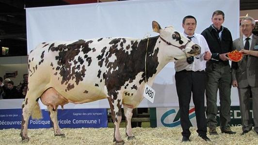 R sultats du concours normand du salon de l 39 agriculture 2013 - Salon de l agriculture resultat concours ...