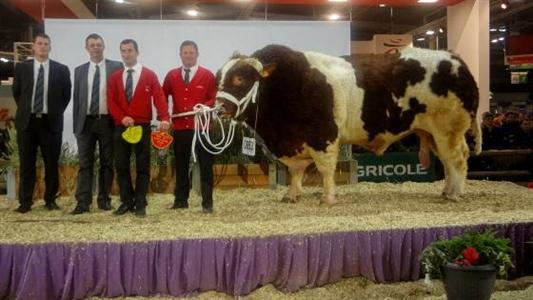 Direct vid o du concours sia rouge des pr s et palmar s - Palmares salon de l agriculture ...