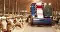 Agritechnica 2013 - Une m�langeuse automotrice Siloking pour les �levages de 500 vaches et plus !