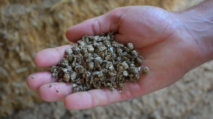 Les granulés de paille