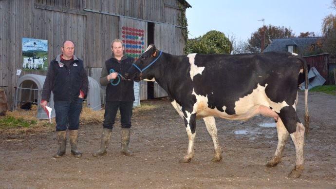 Gaec de la Cour de la Roe - Mayenne Holstein