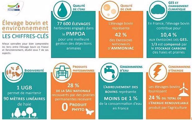 Élevage bovin et environnement: les chiffres-clés