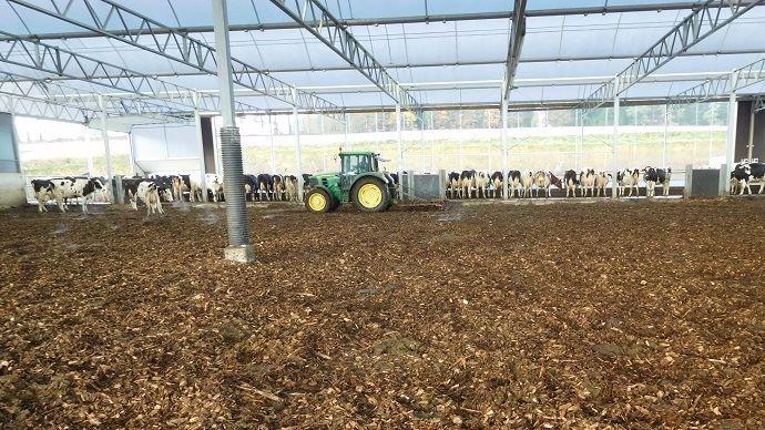 La litière malaxée offre une aire de couchage confortable pour les animaux et simplifie le travail de l'éleveur tout en lui fournissant un compost de qualité.