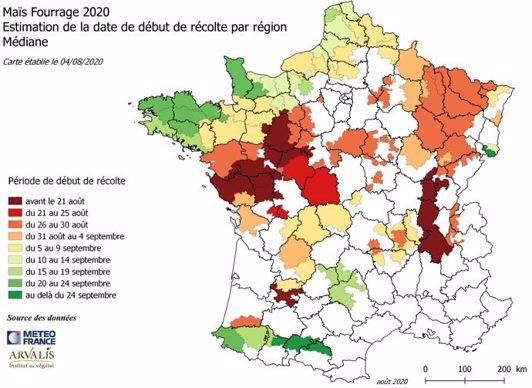 Date des ensilages de maïs 2020 par région selon les prévisions d'Arvalis