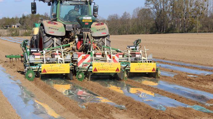 Semis de maïs sous bâche