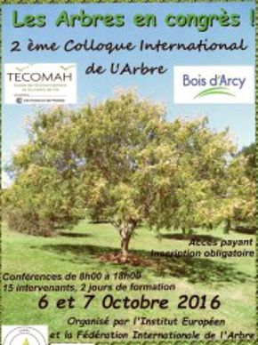 colloque-international-arbre
