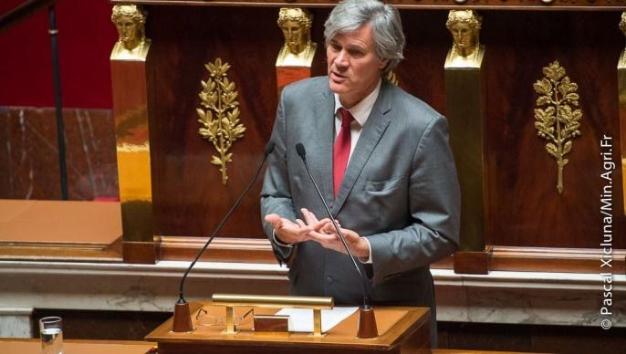 La loi d'avenir pour l'agriculture, l'alimentation et la forêt a été définitivement adoptée jeudi 11 septembre par l'Assemblée Nationale.