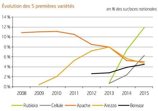 Evolution des surfaces des 5 premières variétés de blé tendre.