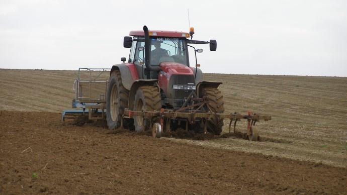 Inquiétudes sur les cultures de blé en Ukraine