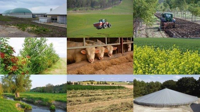 Les solutions pour réduirel'emprunte carbone des exploitations agricoles