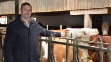 Des vaches simmental à plus de 100000kg dans l'élevage Stockinger