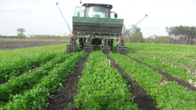 Passage de strip-till en avril 2013
