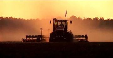 Le top 7 des records du monde agricole