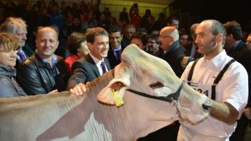 Manuel Valls énonce «trois chantiers» pour venir en aide à l'élevage