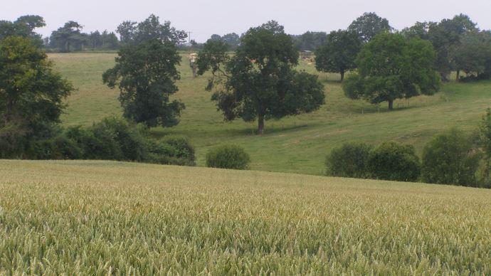 Retrouvez tous les prix du foncier agricole 2015 en Pays de la Loire.