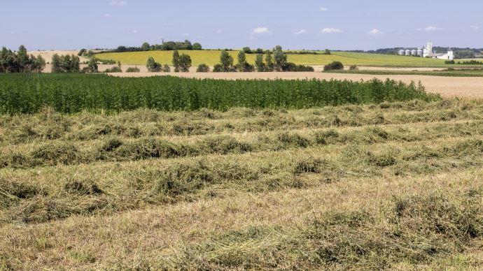 Retrouvez tous les prix du foncier agricole 2015 en Bourgogne-Franche-Comté.