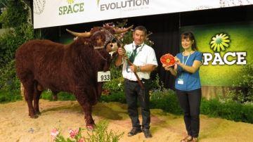 Palmarès Salers: L'élevage Ropert (50) remporte les championnats