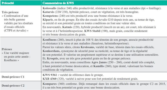 Maïs grain KWS