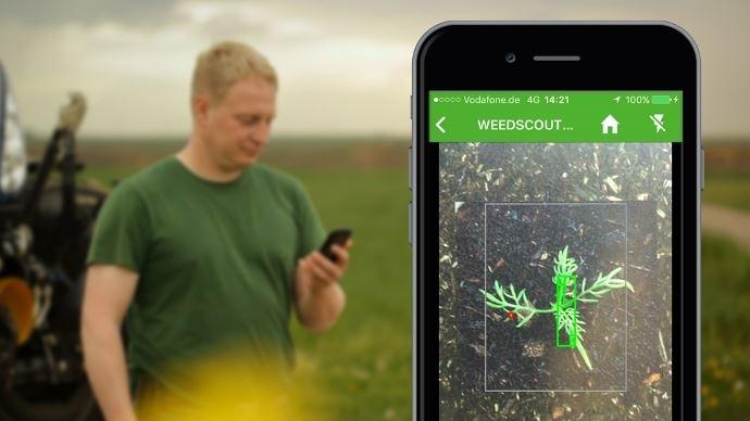 L'appli Weedscout s'enrichit des contributions des agriculteurs.