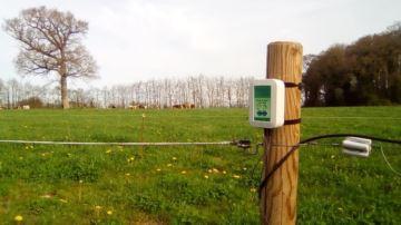 Vigifence, une clôture électrique connectée pour des vaches bien gardées