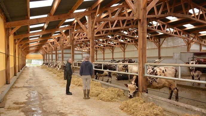 Le registre des actifs agricoles a beau être instauré, la profession agricole et les pouvoirs publics doivent encore plancher sur la définition de l'agriculteur professionnel.
