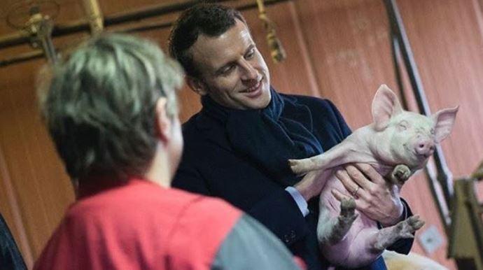 Après sa visite, à l'automne dernier, d'une exploitation bretonne, le désormais président de la république fait son premier déplacement agricole en Haute-Vienne vendredi 9 juin 2016 sur une exploitation d'élevage.