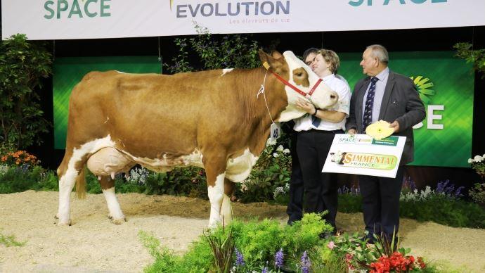 Cadreuse (Offenbach x Lys), meilleure laitière en race Simmental.