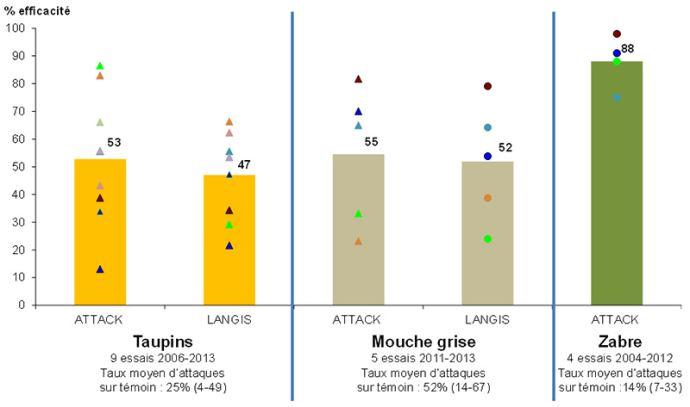 Efficacité (en%) des traitements de semences insecticides vis-à-vis des ravageurs du sol (essais 2006 à 2013)