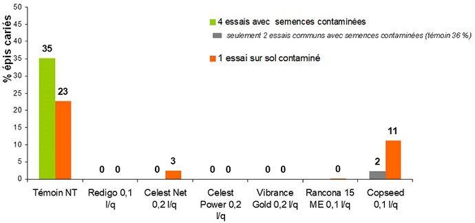 Evaluation comparée (en% d'épis cariés) de traitements de semences vis-à-vis de la carie commune, selon deux sources de contamination