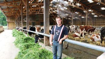 Vaches plus calmes et productivité qui coule de source à l'EARL Lecompte (76)