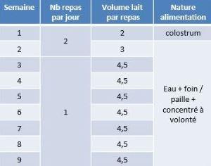 La chambre d'Agriculture du Nord Pas-de-Calais préconise de passer à un seul repas par jour après 2 semaines pour les veaux laitiers