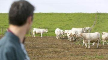 La MSA lance une étude sur les risques professionnels du monde agricole