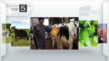 Meilleurs éleveurs 2017 et prairies pharmacies: deux articles plébiscités