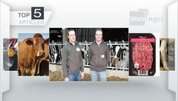L'étude de FranceAgriMer sur les systèmes laitiers plébiscitée par les lecteurs