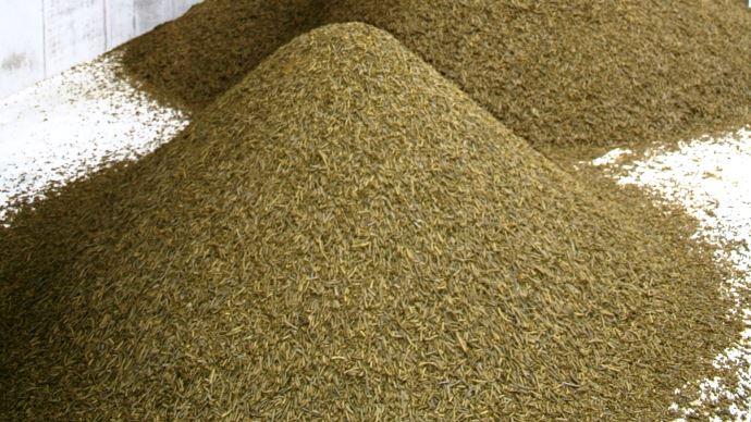 L'indépendance protéique des élevages français est en danger à cause du projet de révision de la directive biocarburant qui pourrait réduire la part de colza implanté dans l'hexagone et donc soumettre les éleveurs au marché du soja