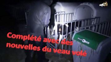 Les éleveurs se défendent d'une nouvelle attaque anti-élevage