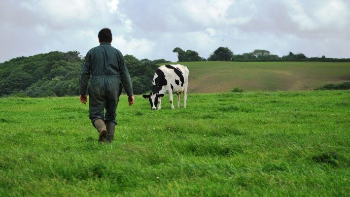 Réaction des éleveurs suite à la vidéo anti-élevage de Rémi Gaillard