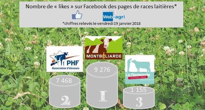 La page Facebook de la race Montbéliarde est en tête devant Prim'holstein France et la Normande.