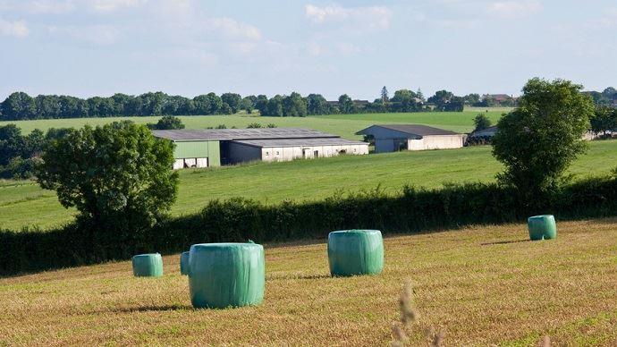 Paysage agricoles avec enrubannage