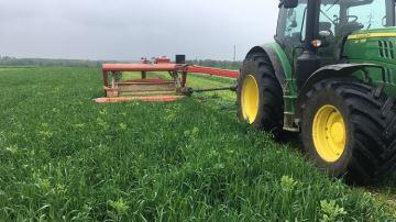 En photos et vidéos: la récolte de l'herbe bat son plein!