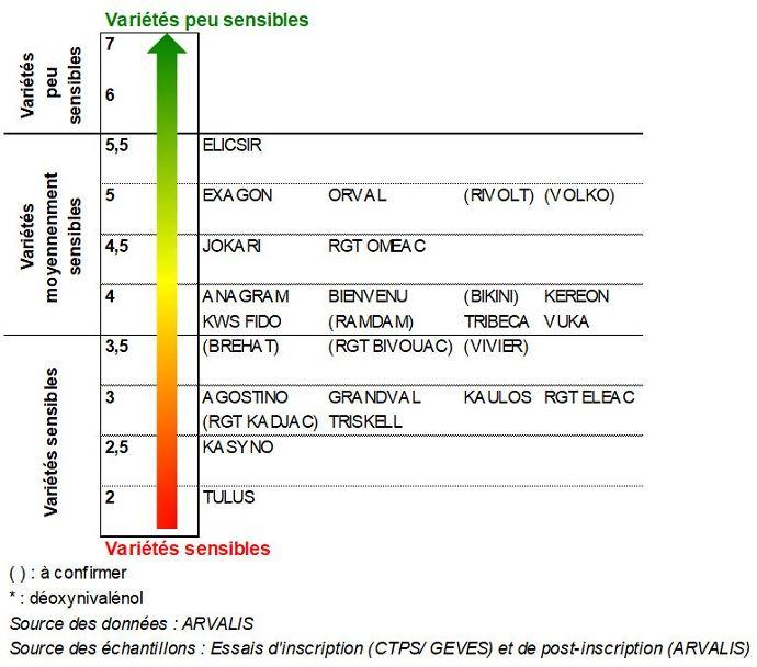 Classement des variétés de triticale selon leur résistance au risque DON (F. graminearum) - échelle 2018/2019
